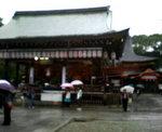 070714_mikosi3.jpg